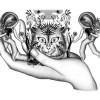 « Pas si bêtes, la chronique du monde sonore animal » par Céline du Chéné