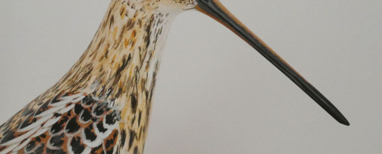 la bécassine des marais   the snipe, sculpture