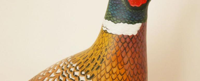 the common pheasant | le faisan de colchide
