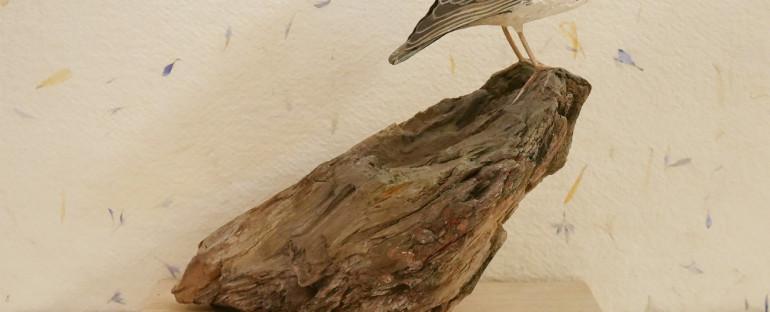 the woodlark | l'alouette lulu
