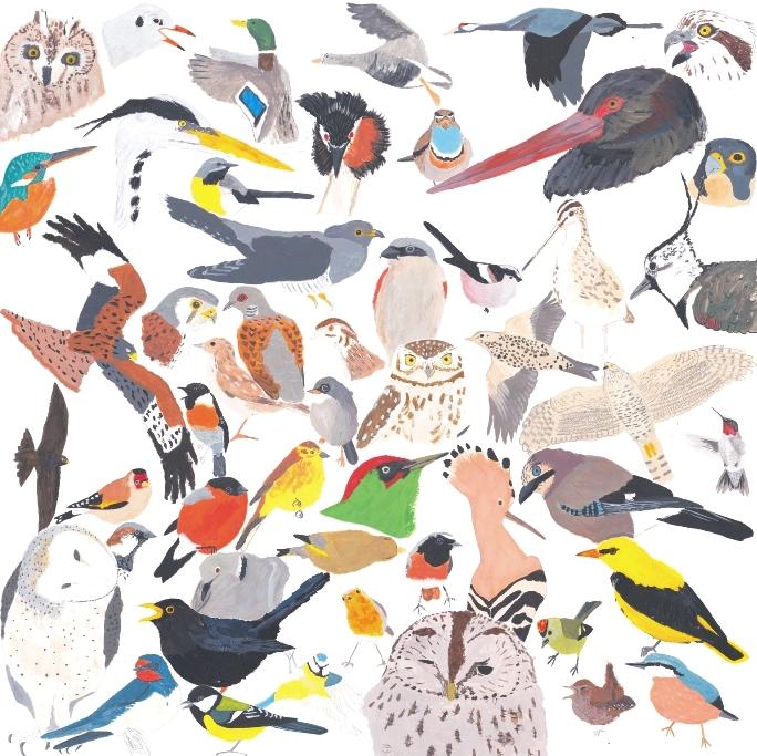 """le poster """"des oiseaux sous nos pinceaux"""""""