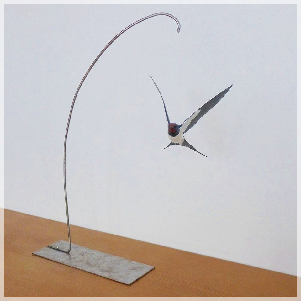 l'hirondelle rustique, the barn swallow sculpture