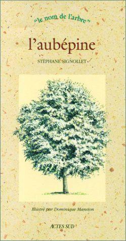 Stéphane Signollet, l'aubépine, collection le nom de l'arbre, Actes Sud