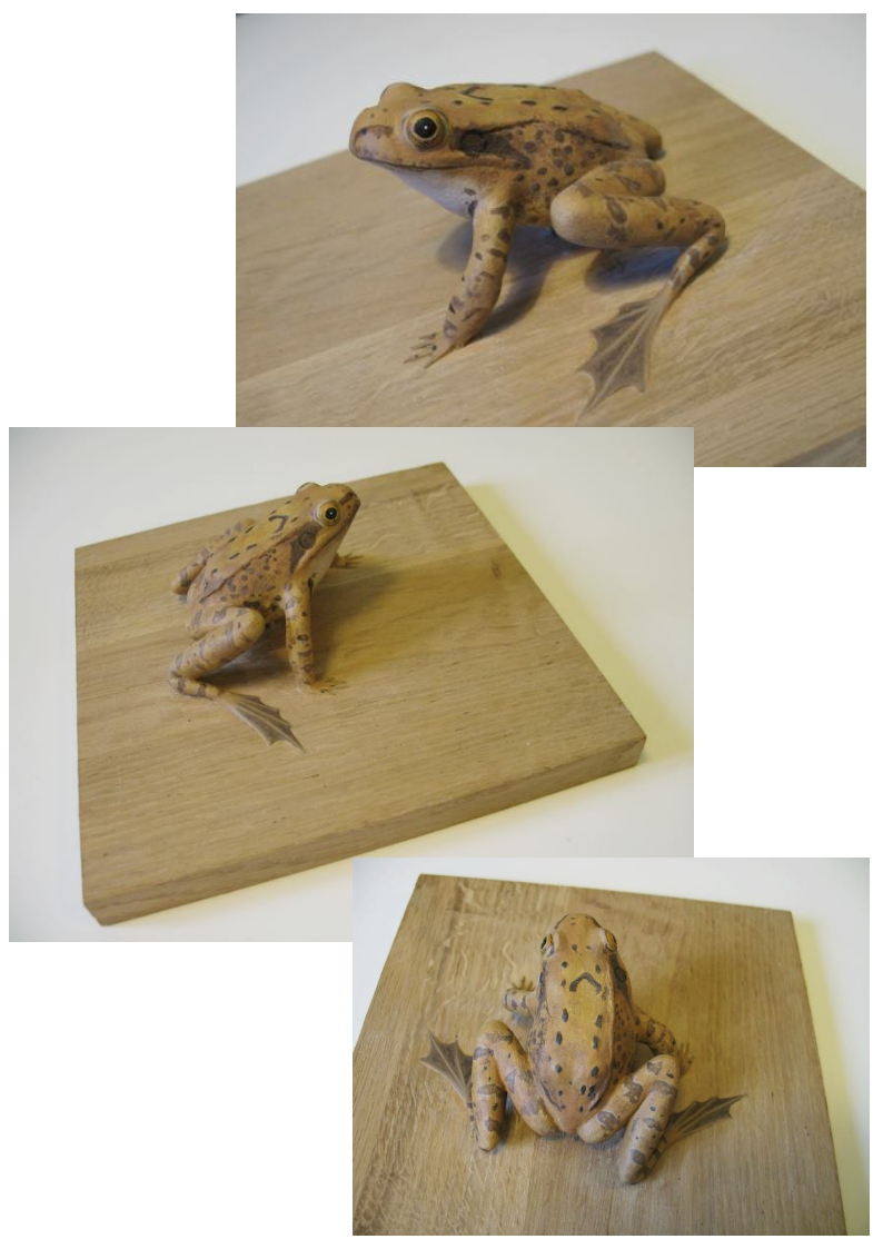 la grenouille rousse, the edible frog, sculpture