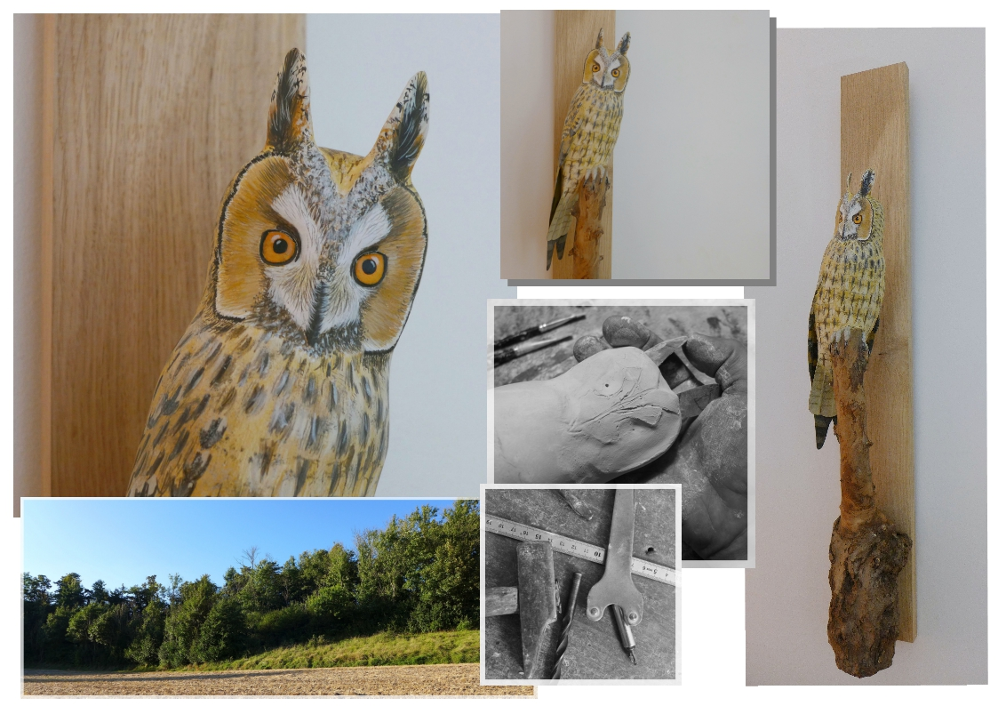 hibou moyen-duc, long eared-owl, sculpture, éric