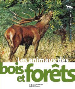 Carls Brenders, Michel Cuisin, La Vie Secrète des Bêtes, Les animaux des bois et des forêts, Hachette Jeunesse