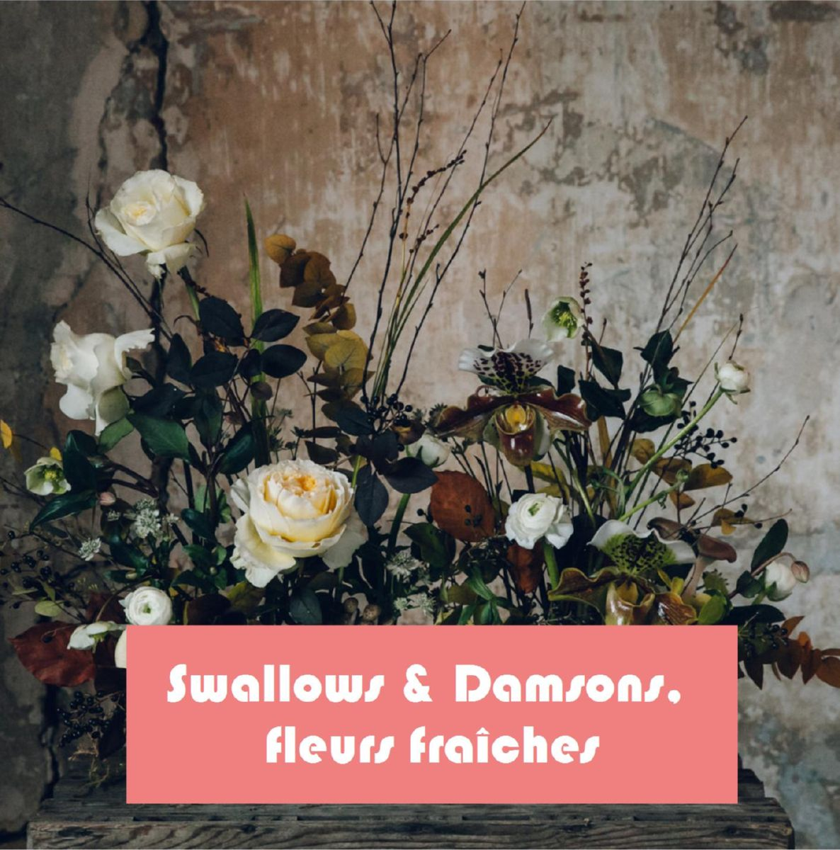 Swallows & Damsons, les fleurs fraîches d'Anna Potter. Photo Anna Potter.