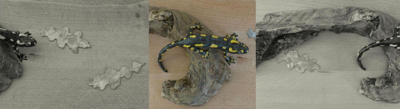 la salamandre tachetée, the fire salamander, sculpture