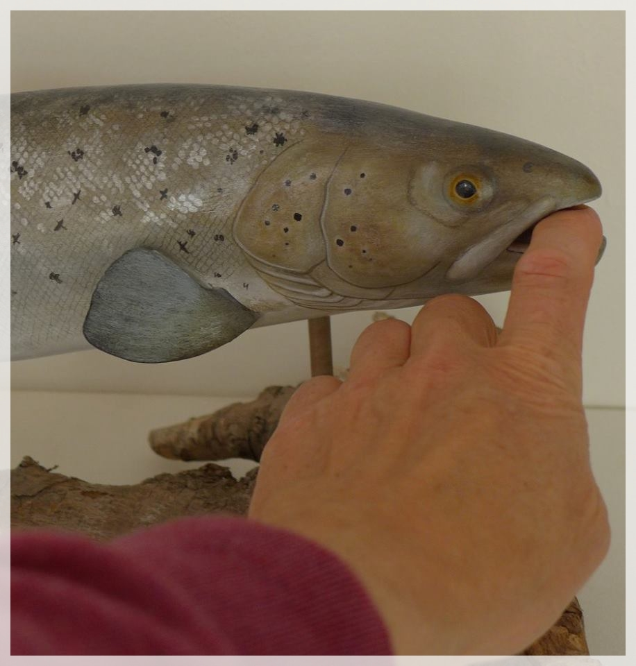 la truite de mer, the sea trout, sculpture