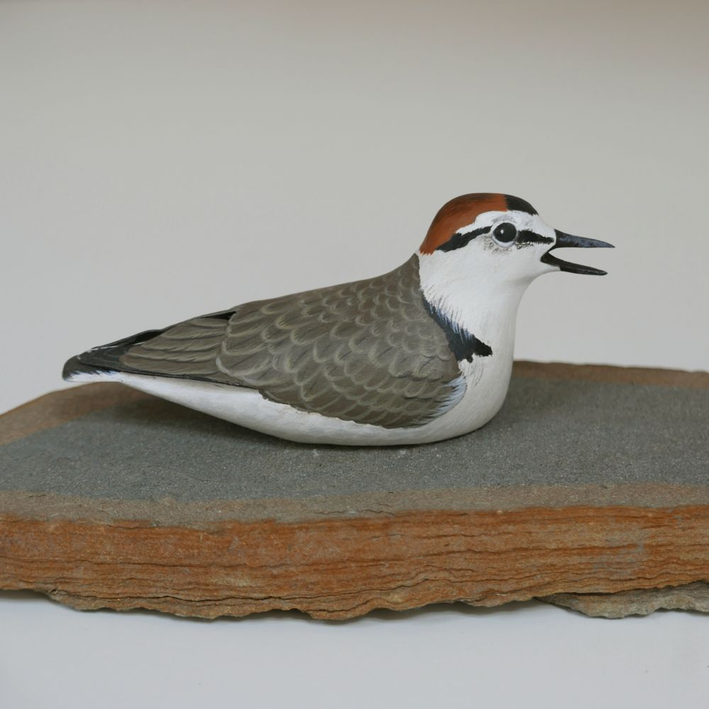 eric billion, sculpture, le gravelot à collier interrompu, the kentish plover