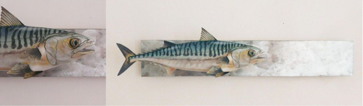 le Maquereau de l'atlantique| the Atlantic Mackerel | sculpture