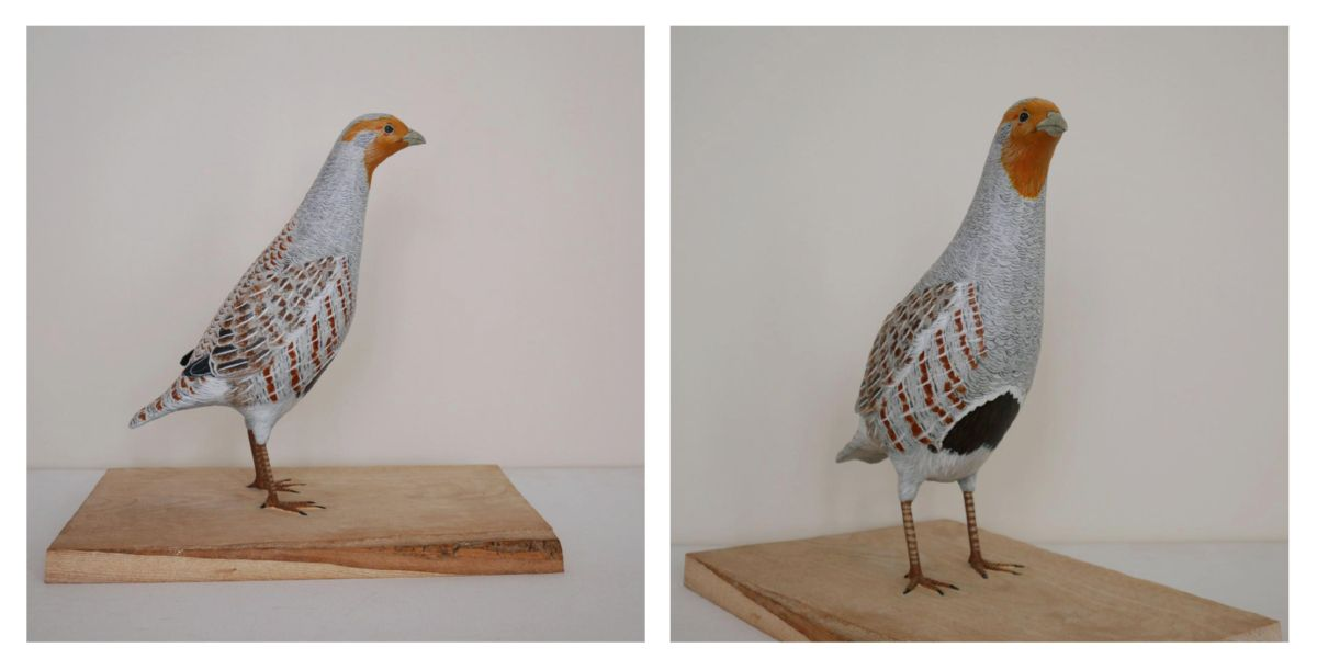 la perdrix grise, the grey partridge, sculpture