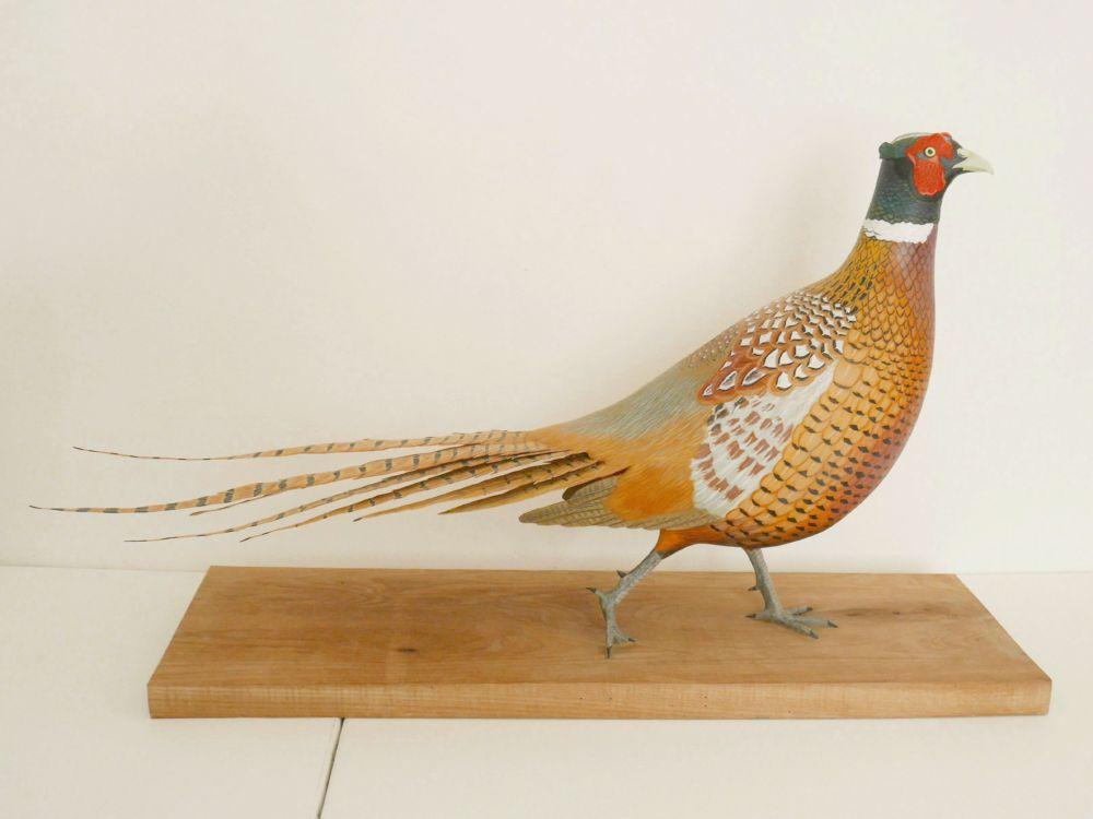 The common Pheasant | le Faisan de Colchide, sculpture