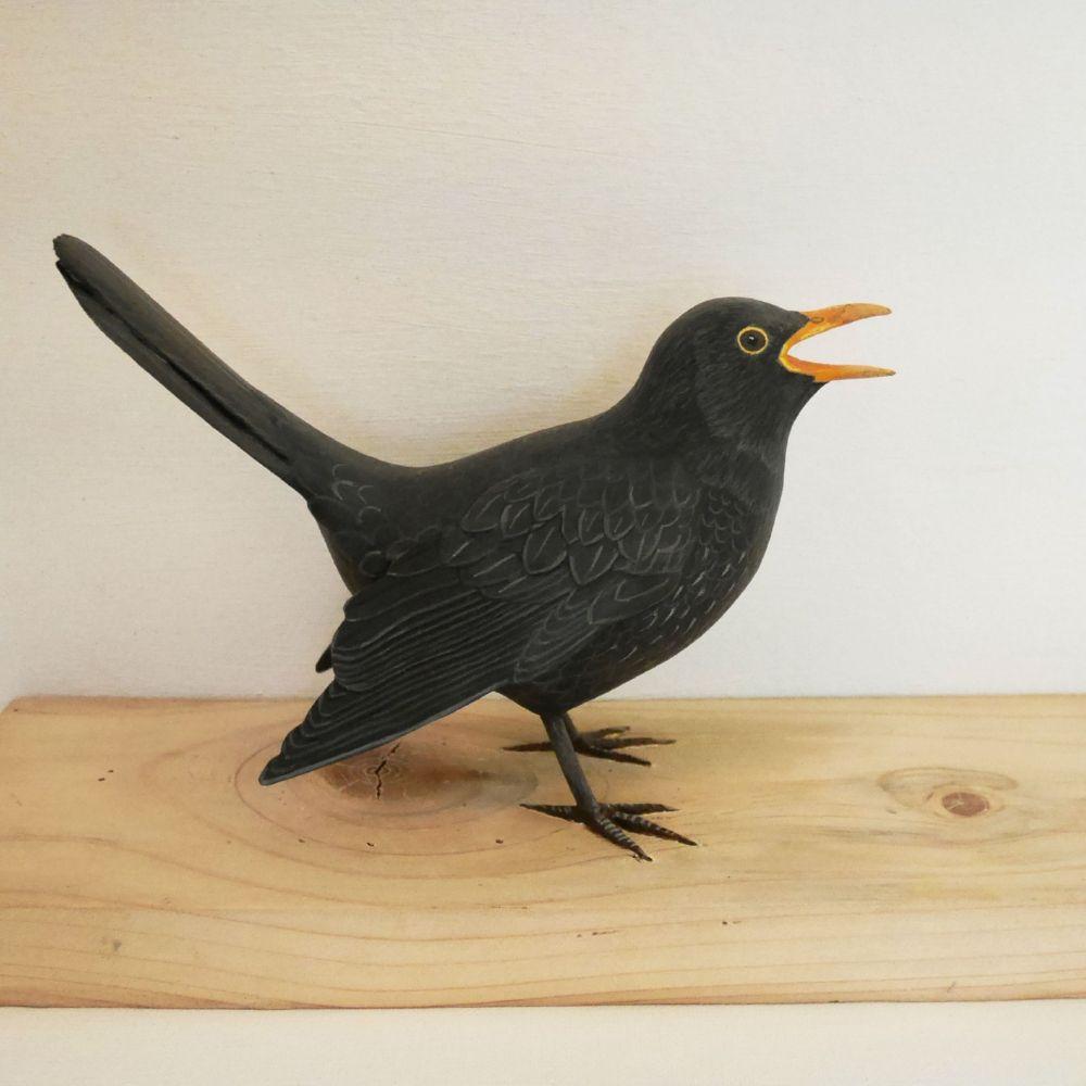 The Blackbird | le Merle noir, 24 cm