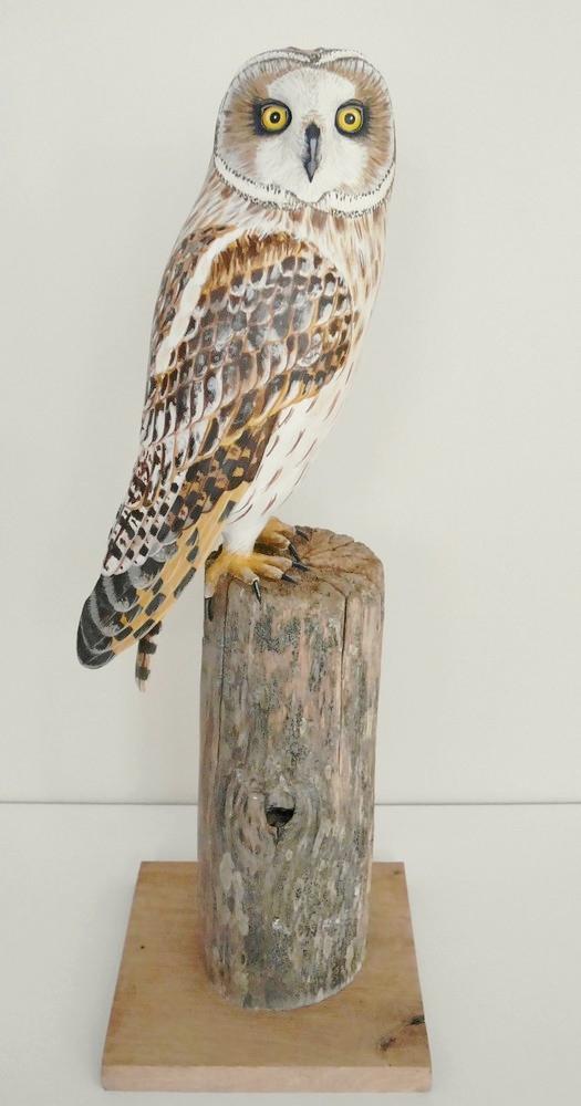 the short-eared owl   le hibou des marais, sculpture