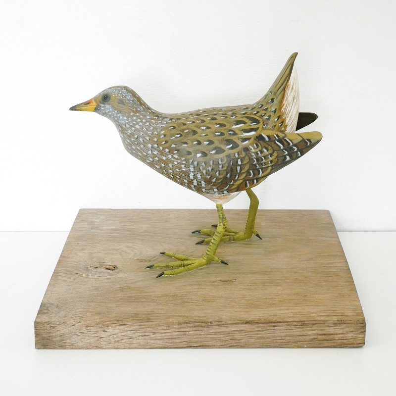 la Marouette ponctuée | the spotted Crake, sculpture