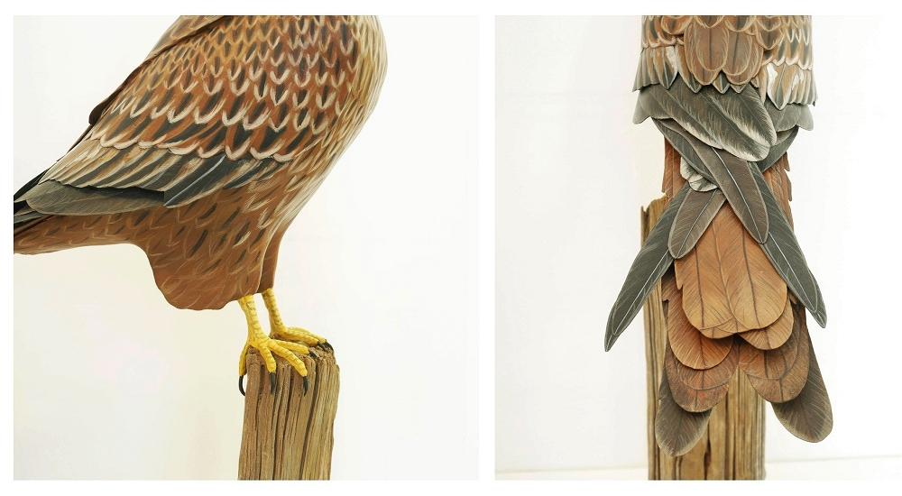 the red kite | le milan royal, 48 cm