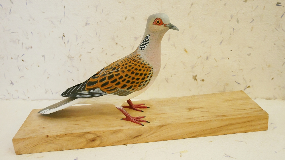 the turtle dove| la tourterelle des bois, 25 cm