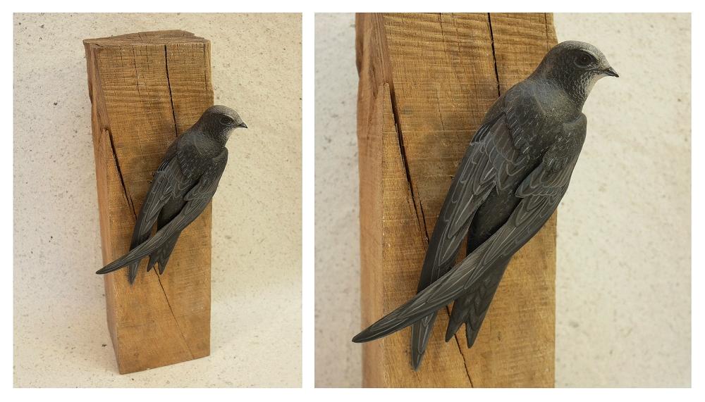 The common Swift | le Martinet noir, sculpture