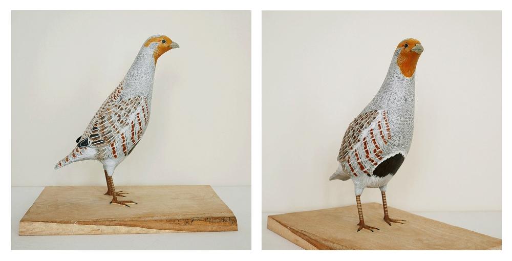 the grey partridge | la perdrix grise, 28 cm
