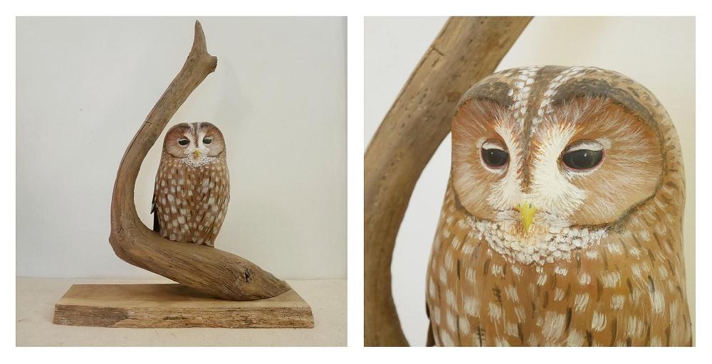 the tawny owl | la chouette hulotte, 32 cm