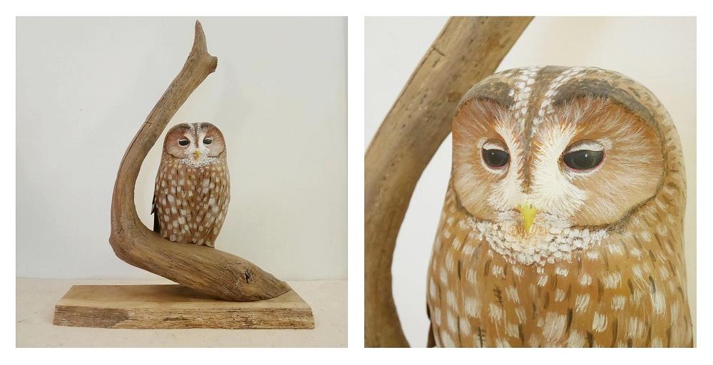 the tawny owl|la chouette hulotte, 32 cm