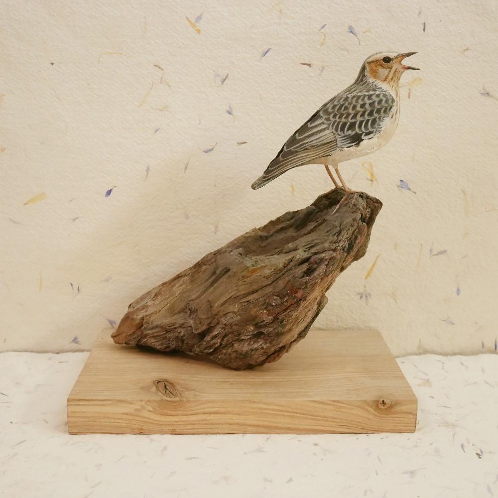 the woodlark | l'alouette lulu, 15 cm